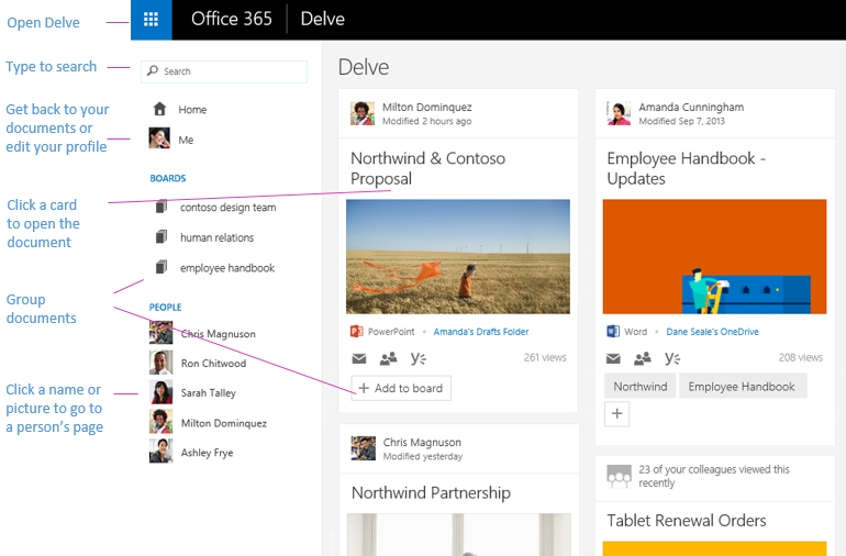 Office-Delve-User-Interface