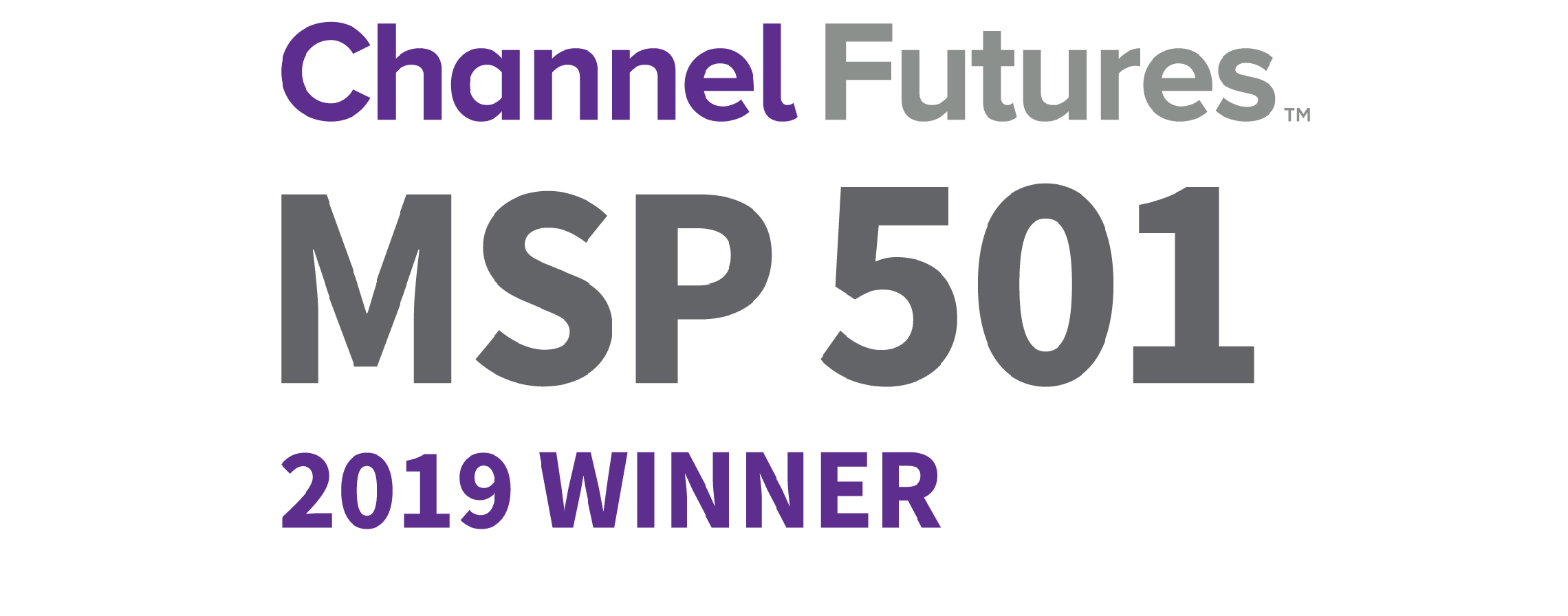 MSP 501 winners 2019 logo
